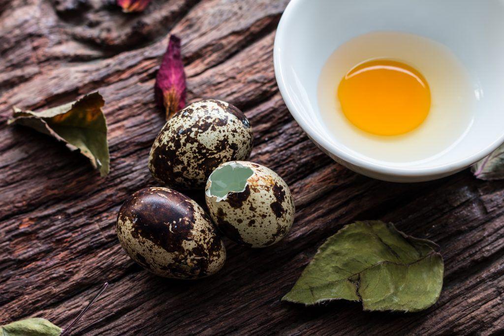 Перепелиные яйца: их польза и вред для организма человека
