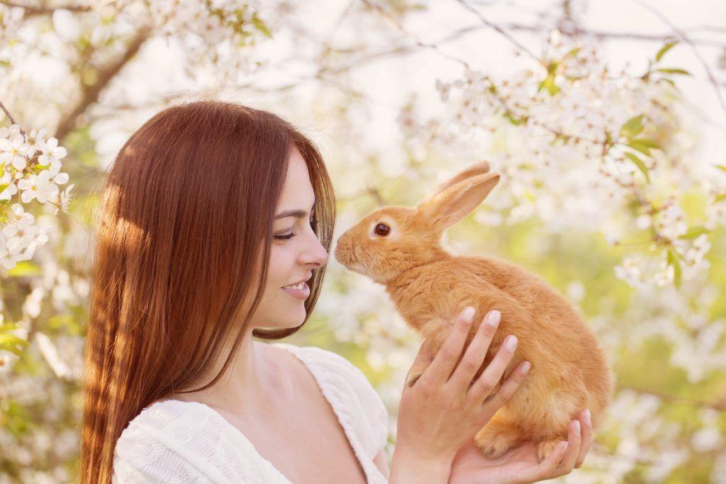 Имя для кролика мальчика белому. Определяемся, как же назвать любимого кролика.