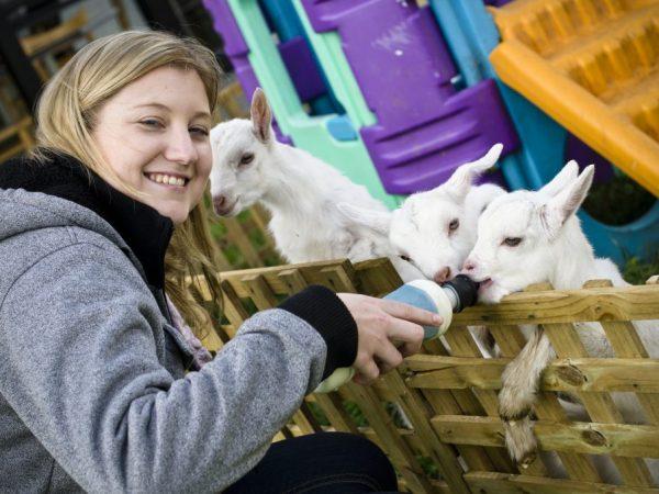 Малыши и коза нуждаются в заботе