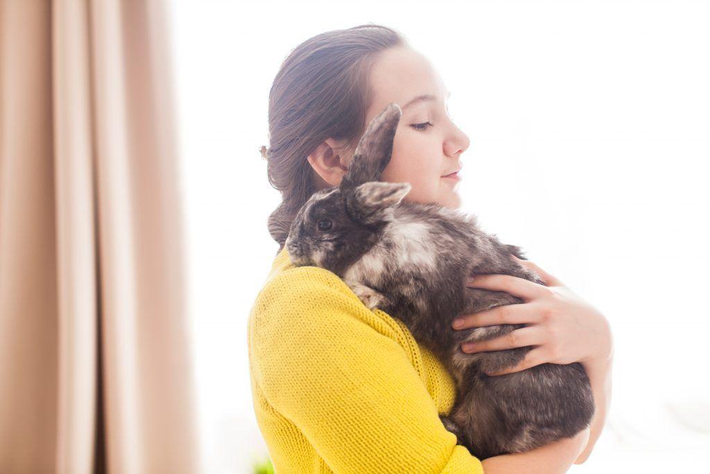 Антибиотики для кроликов широкого спектра действия