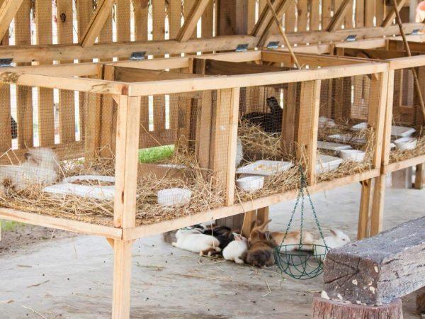 Этапы постройки сенника
