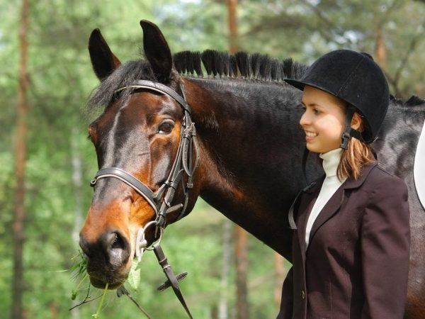 Чалая масть лошадей