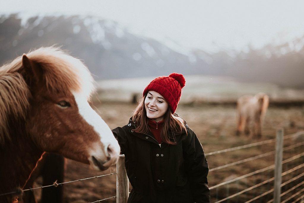 Нужно найти общий язык с конем и расположить его к себе