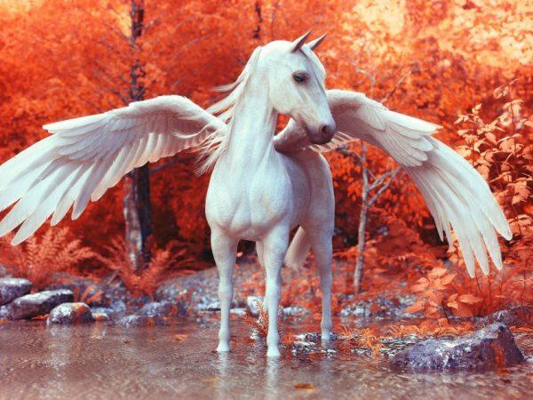 Лошадь в виде Пегаса