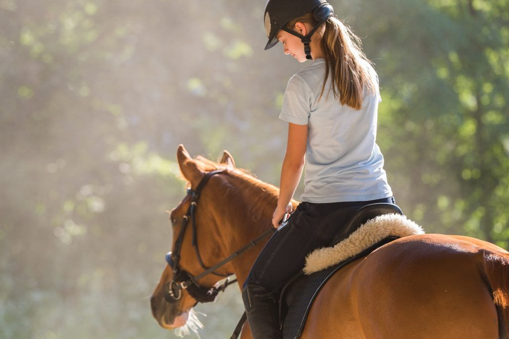 Как правильно оседлать лошадь