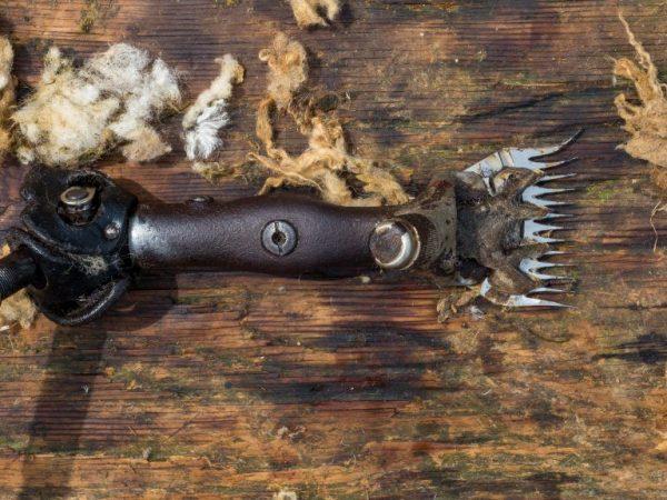 Электронные ножницы для стрижки овец