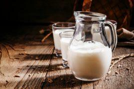 Польза и вред молока овцы