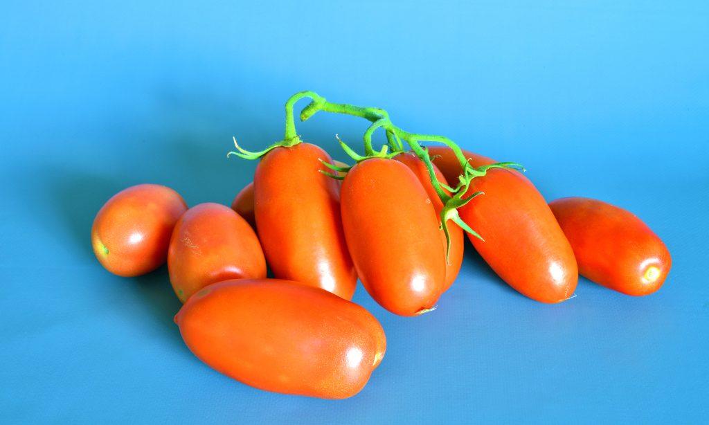 Томат Детские пальчики F1: отзывы об урожайности помидоров, фото семян Седек, описание и характеристика сорта