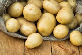 Характеристика картофеля сорта Скарб