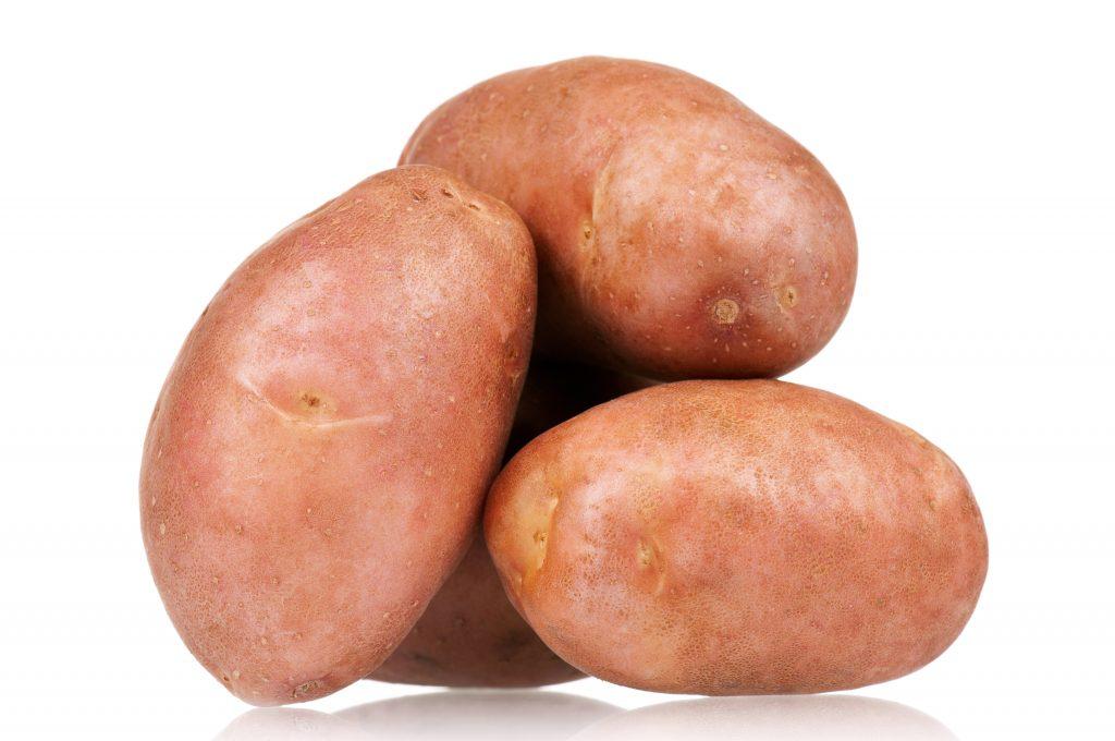 картофель вектор описание сорта фото отзывы самом