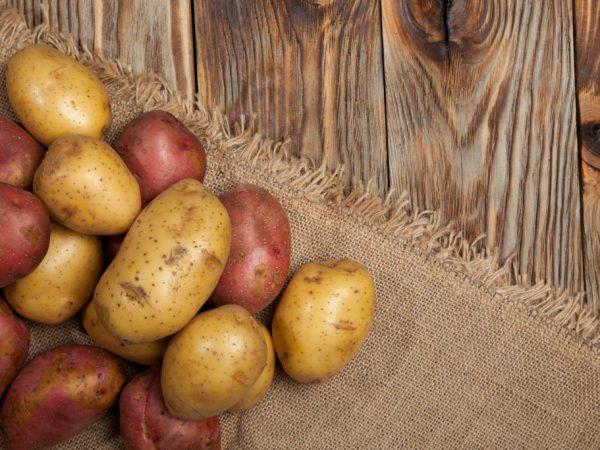 Тамбур обеспечит хорошую лёжкость овощей