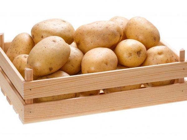 в чем лучше хранить картошку в квартире