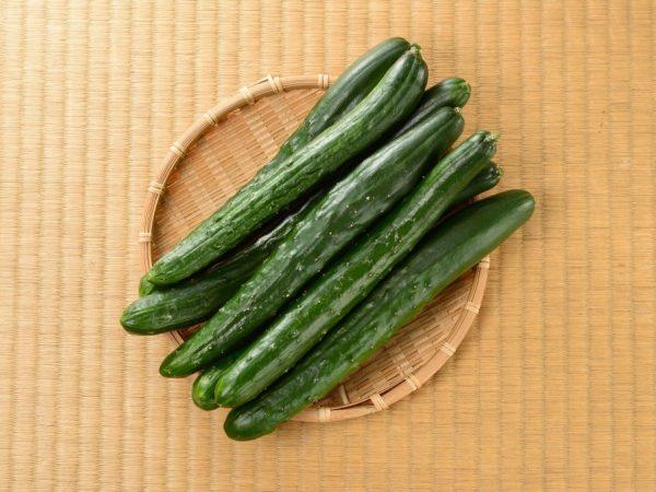 Семена китайских огурцов для открытого грунта