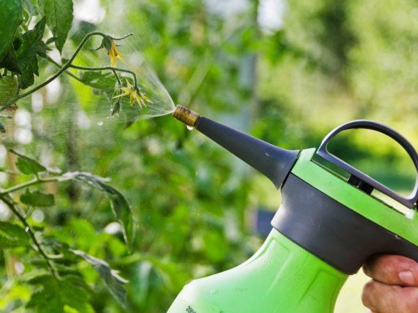 Сыворотка поможет укрепить иммунитет растений