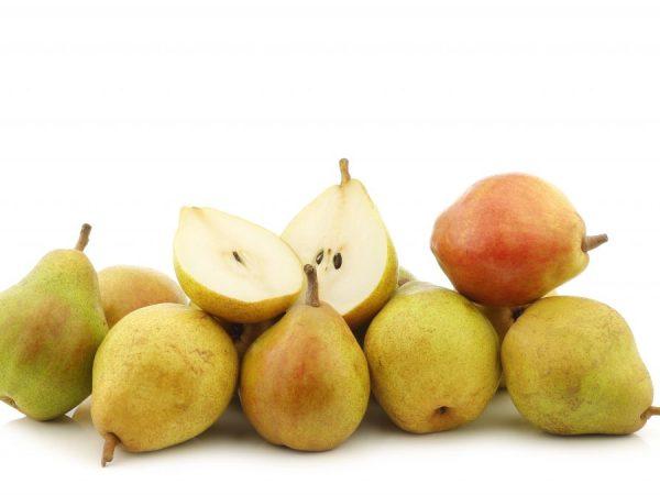 Плоды формой напоминают яблоко, их средняя масса около 150 г