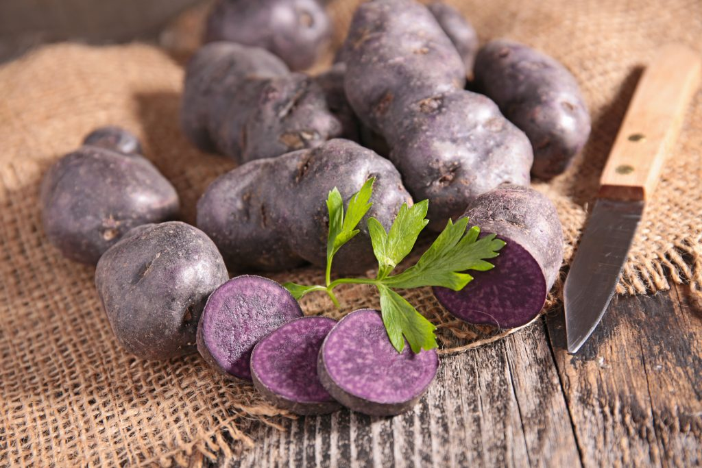 Сорт картошки фиолетового цвета