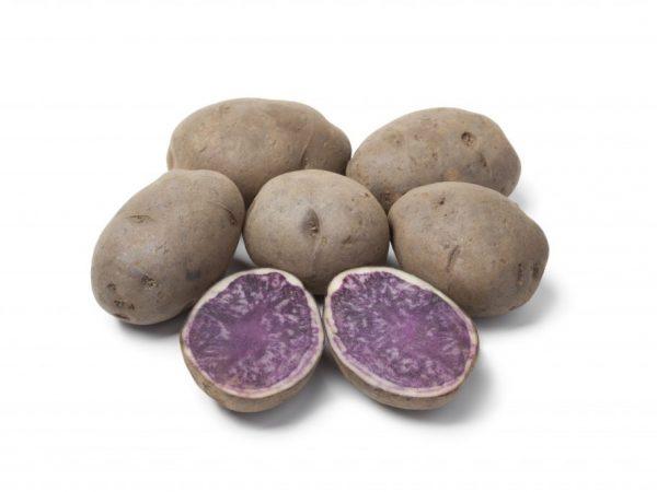 Вкус картошки практически ни чем не отличается