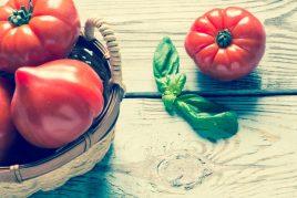Описание помидор сорта Хали Гали
