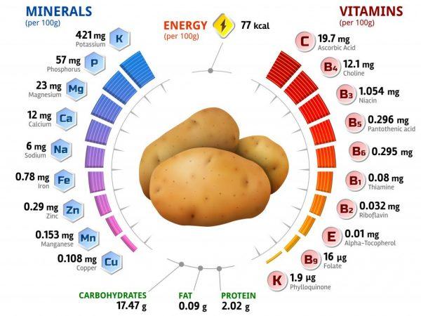 Химический состав картофеля