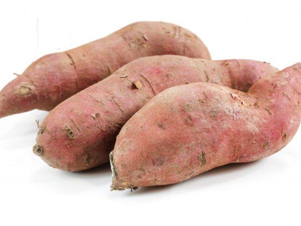 Картофель садят глубоко
