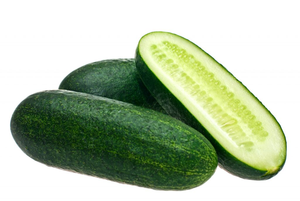 Луховицкие огурцы характеристика и описание сорта как выращивать с фото
