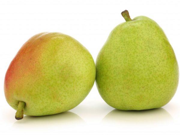 Плоды зелёного цвета, вес одной груши достигает 150