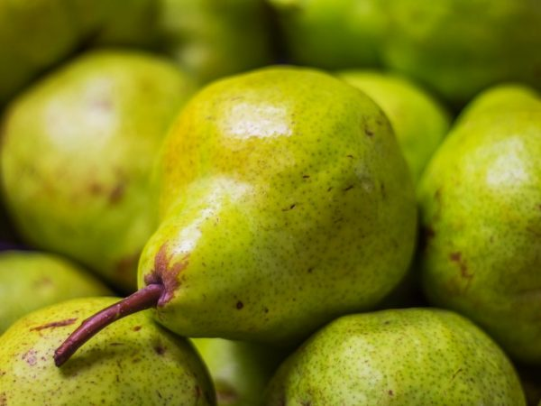 Плоды имеют зеленовато-желтый окрас