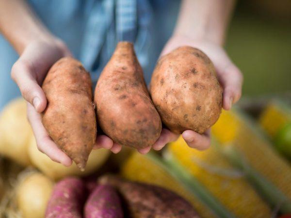 Влияние картофеля на организм человека