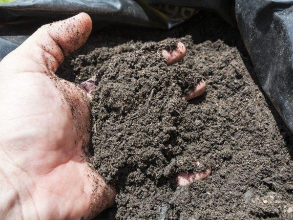 Готовая почва