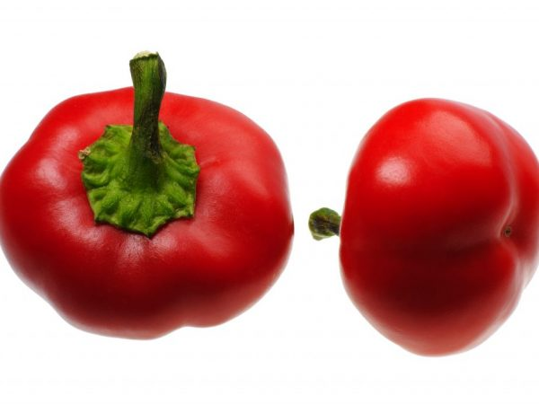 перец рубиновый характеристика и описание сорта