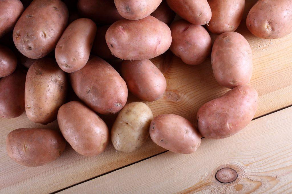 картофель красавчик описание сорта фото отзывы есть еще более