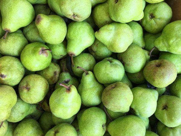 Плоды зелёного цвета, их вес около 180 гр