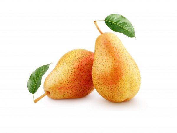 Плоды желто-оранжевые с красными крапинками.