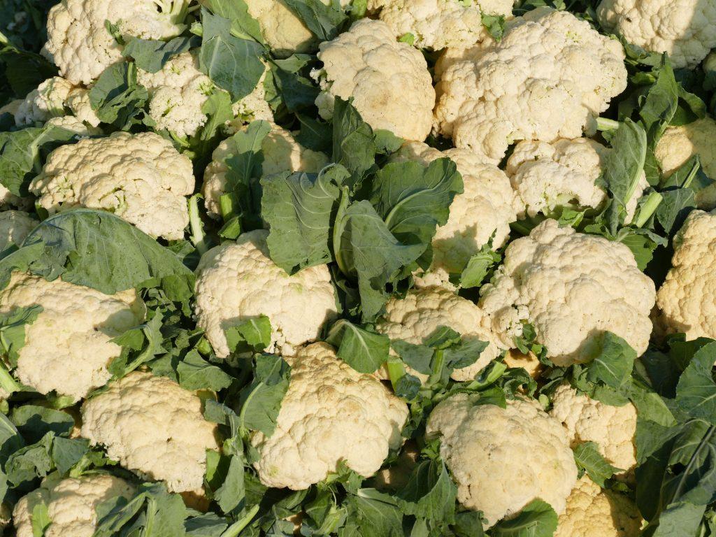 Можно ли хранить цветную капусту в погребе