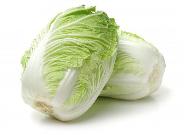 Характеристика пекинской капусты сорта Маноко