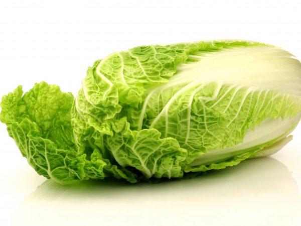 Правила выращивания китайской капусты