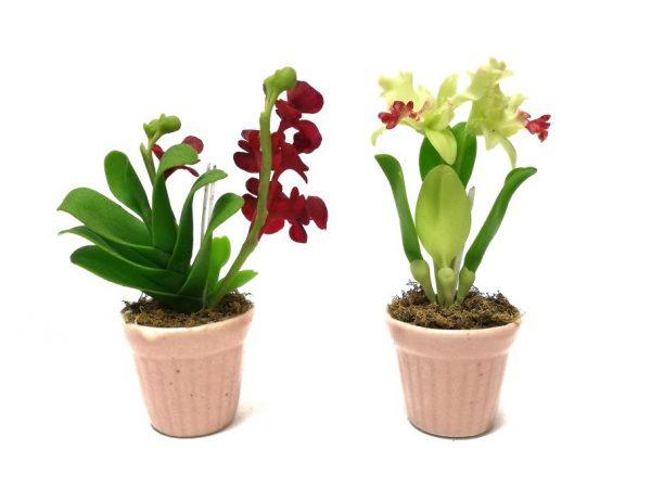 Польза серамиса для орхидеи