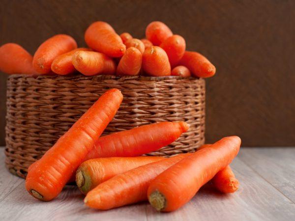 Описание сорта моркови Балтимор f1