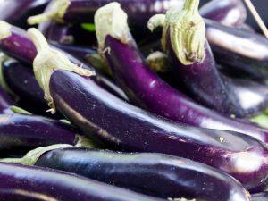 Выращивание Длинного фиолетового баклажана