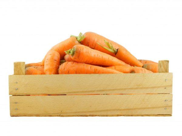 Создайте для овощей оптимальные условия