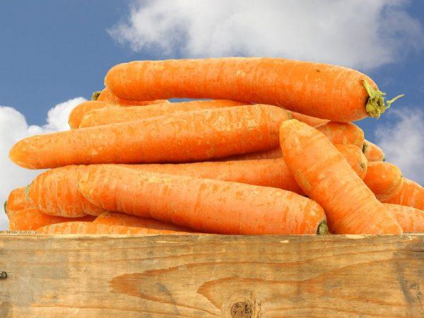 Сохранить морковь свежей можно надолго