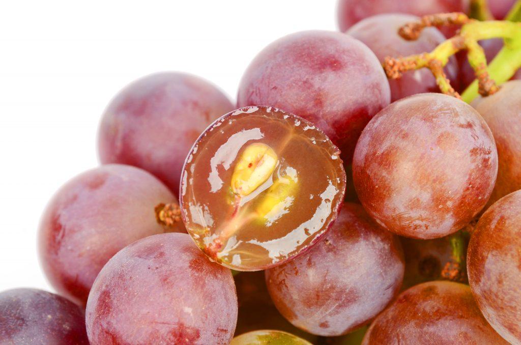 Виноград из косточки как вырастить в домашних условиях как прорастить