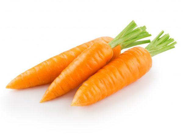 Описание моркови Каротель