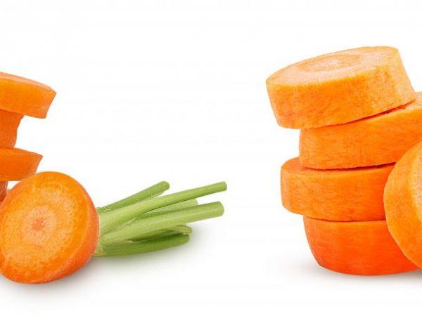 Крупная морковь при правильном уходе
