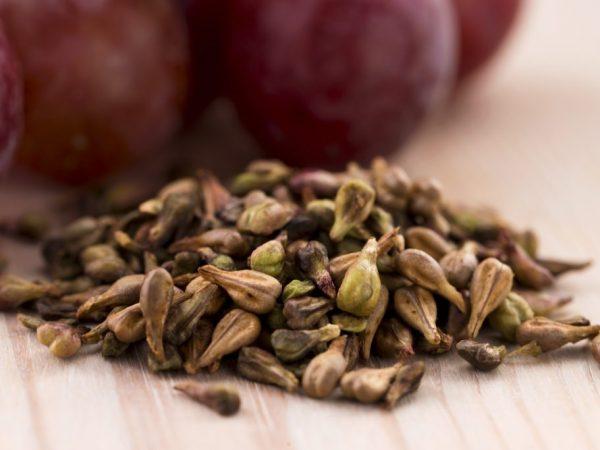 Использование свойств виноградной косточки