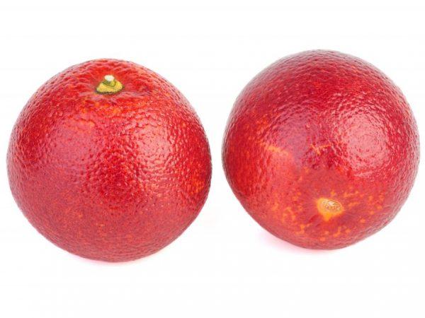 Сорт удивит окрасом плодов