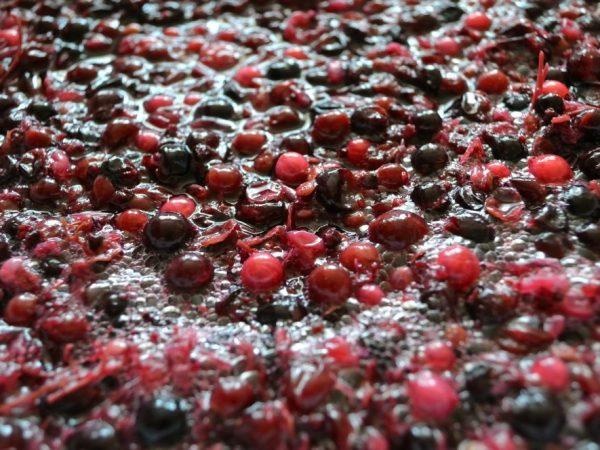 Нюансы и технология повторного использования виноградной мезги. Что из нее можно приготовить{q}