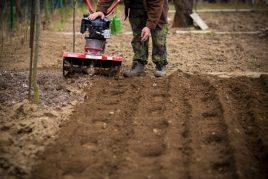Мотоблок Нева для выращивания картофеля