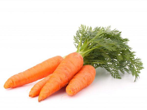 Можно ли морковь при гастрите желудка: сырая, вареная и тертая морковка при гастрите