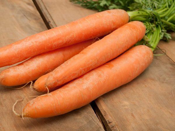 Описание моркови Нандрин F1